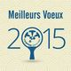 voeux 2015 80